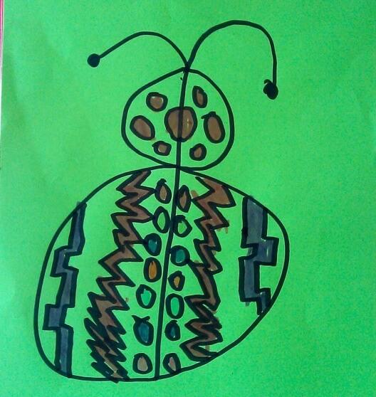 podręcznikowy motylek