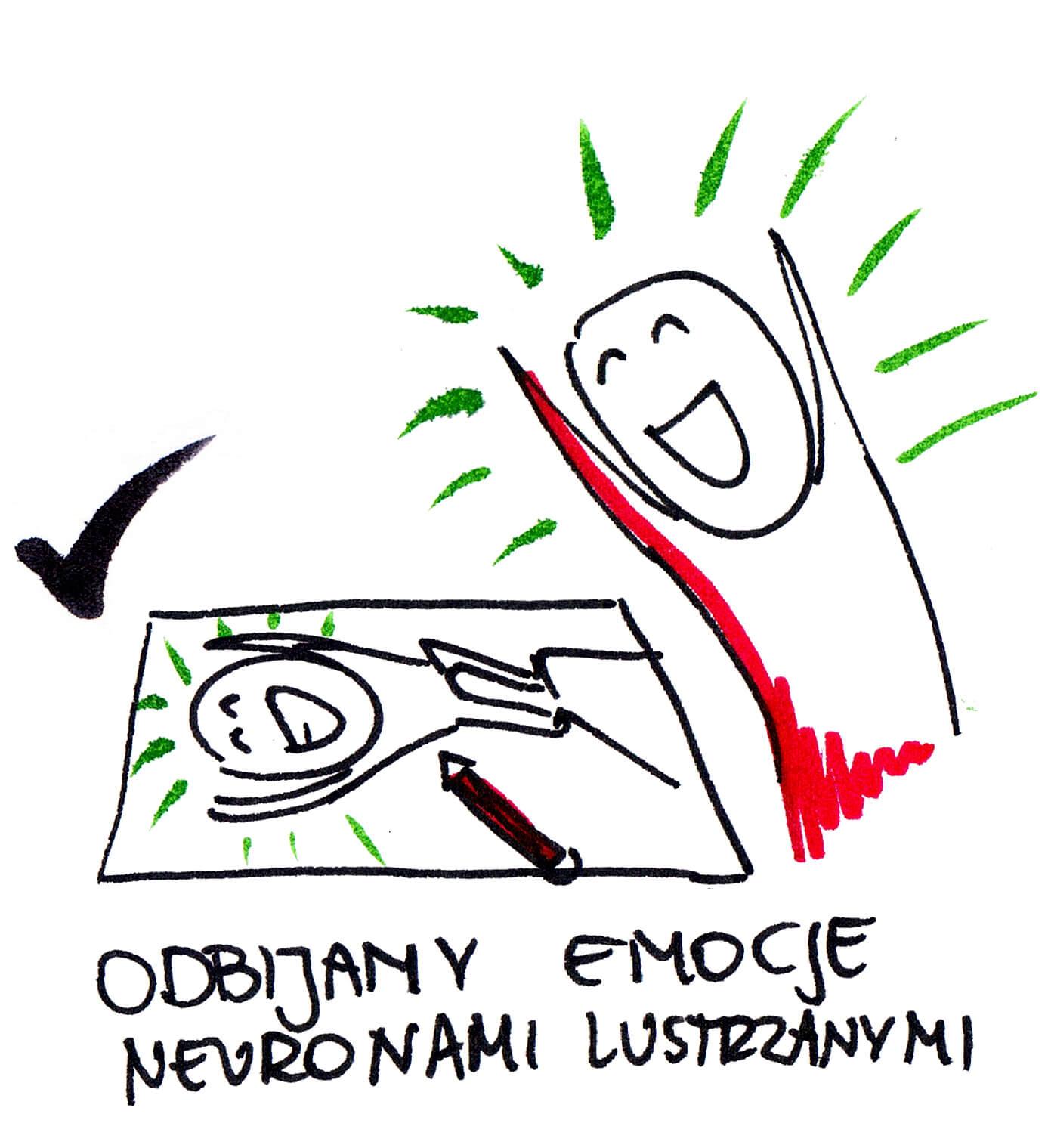 7. neurony lustrzane uruchamiane przy rysowaniu klaudia tolman